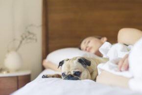 Sådan får du det perfekte soveværelse i dit nybyggede hjem!