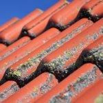 Hvilke muligheder har du med husets facade og tag